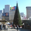 Christmas Tree In Union Square San Francisco